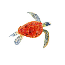 Baby Turtle Watercolor, Baby Turtle Clipart,Baby Turtle, Baby Turtle Painting,Baby Turtle Art,Print Wall Art,Cute Baby Turtle,Hand Painted,Instant Download,Prints Wall Art