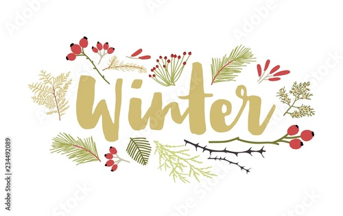Fotografía  Winter lettering handwritten with cursive calligraphic font and decorated by coniferous tree branches and berries