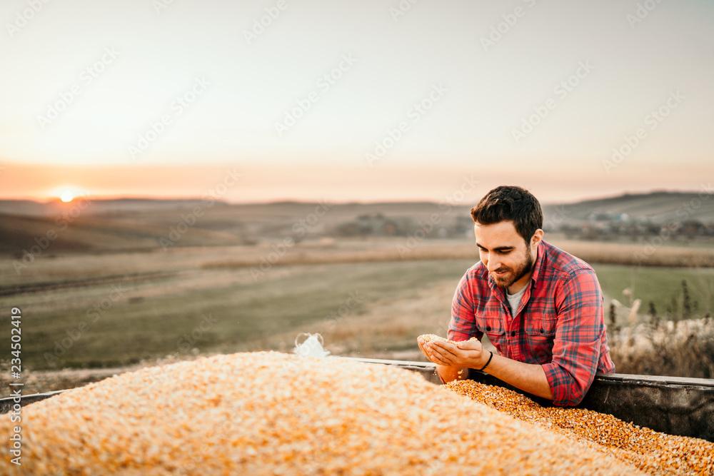 Fototapety, obrazy: Portrait of harvester at sunset enjoying his harvest in tractor trailer