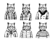 Sketch Of Fox In Winter Jacket. Hand Drawn Vector Illustration