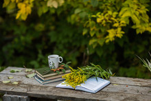 Cup Of Tea, Book, Flowers, Autumn