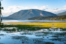 Beautiful Mountain Lake With Marshland In Foreground At Sunset. Salmon Arm, BC, Canada.