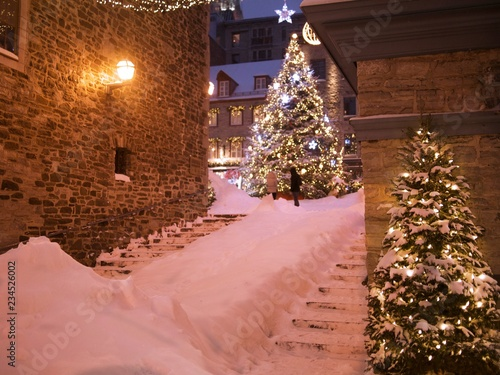 Christmas Tree At Place Royale After A Snowstorm At Night In Quebec