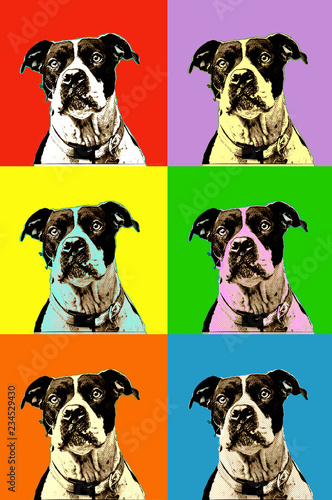 Obraz na plátně Portrait of a dog in pop art style