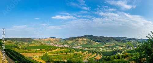 Fotografie, Obraz  Germany, XXL landscape panorama of winemaking Kaiserstuhl region at Oberbergen
