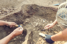 Archaeological Excavations.  A...