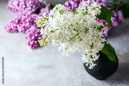 Bouquet of a white lilac on a concrete background.