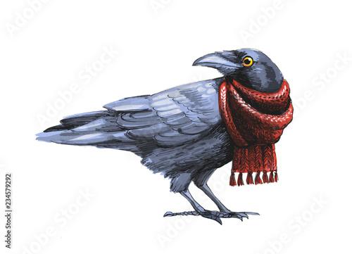 Slika na platnu black crow sketch in red knitted scarf