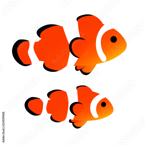 Fotografia, Obraz clownfish