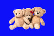 Leinwandbild Motiv Bear family is happy Caw Separate from the background is isolated.