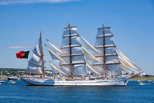 The Sagres Sails Along The Dar...