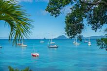 Bateaux Dans La Baie De Sainte...