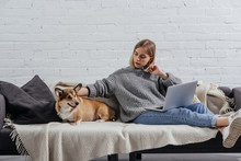 Serious Young Woman Sitting With Pembroke Welsh Corgi Dog On Sofa And Using Laptop