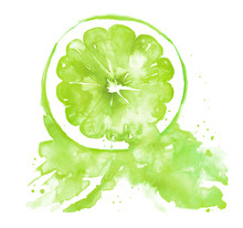 Illustration Of Green Citrus, Lime, Lemon Painted Watercolor. Spray Juice, A Splash Of Paint. Watercolor Poster, Logo With The Image Of Citrus, Lime, Lemon . On An Isolated White Background.