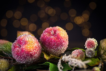 Christmas Holiday Decoration On Black Background. Sparkly Beaded Fruit With Big Green Velvet Ribbon And Bokeh Lights. Shallow Depth Of Field.