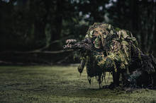 Portrait Of A Camouflaged Soldier In Swamp During Patrol