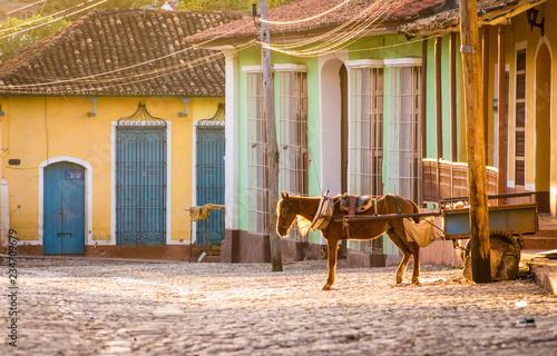 Horse carriage in colonial Trinidad, Cuba Slika na platnu