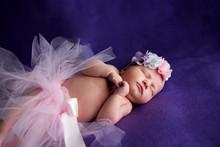 Newborn Girl In A Skirt Sleeps Sweetly.