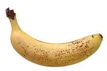 Perfectly Ripe, Brown-spotted Banana Isolated Against A White Background. Banana Skin Broke