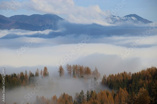Fotografia, Obraz  Dense fog above the valley, in autumn