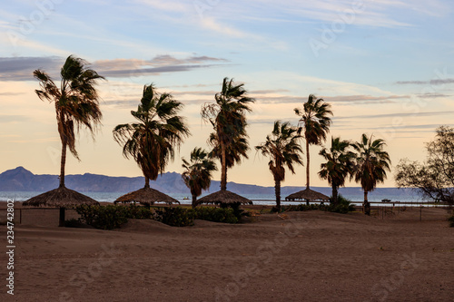 Beach in Loreto, Mexico at sunset. Canvas Print