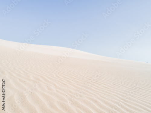 Beautiful dune of Parnaíba, Brazil. Canvas