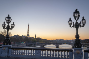 Fototapeta na wymiar Paris, France - 11 18 2018: panoramic view of Paris and the Eiffel Tower from the Alexander III bridge with floor lamp at sunset