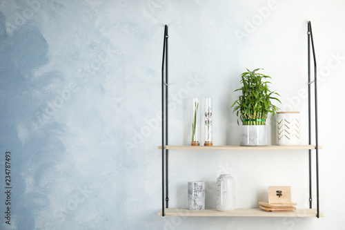 Shelves with green lucky bamboo in pot and decor on light wall. Space for text