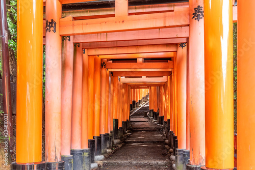 Red Torii gates in Fushimi Inari shrine