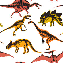 Dinosaurs And Pterodactyl Types Of Animals Seamless Pattern Isolated On White Background Vector.