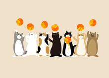毛糸玉で遊ぶ猫たちのかわいい仕草