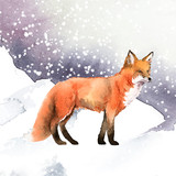 Hand-drawn fox in the snow watercolor style - 234837635
