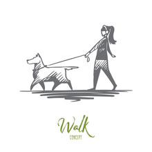 Walk, Pet, Dog, Lifestyle, Dar...