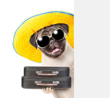 Happy Puppy In Summer Hat With Sunglasses Holds Suitcases Behind White Banner. Isolated On White Background