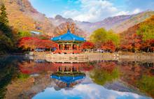 호수 위의 팔각정과 가을 풍경