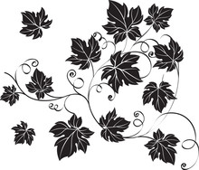 Black Grape Leaves And Vines In Vintage Style.
