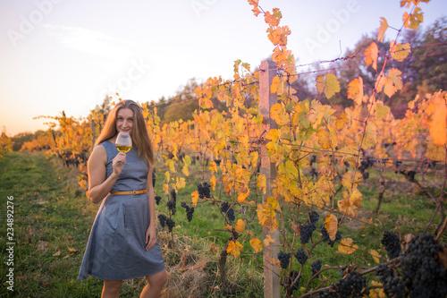 Fototapeta Young woman drinking wine in vineyard. obraz na płótnie