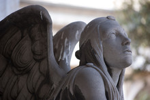 Statue Of Angels At The Stagli...