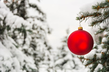 Red Christmas Tree Ball On A Snow-covered Tree Branch
