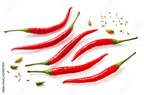 Hot red pepper with spices on white background
