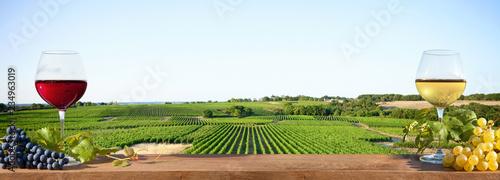 Foto auf Leinwand Landschaft Verre de vin blanc et verre de vin rouge devant un vignoble Français