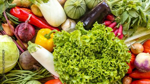 Photo assortiment de légumes frais du potager