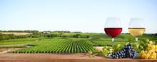 Deux Verres De Vin Sur Paysage De Vigne En France