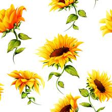 Seamless Pattern Of Sunflowers...