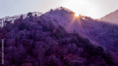 Fotobehang Violet View of Mt. Kintoki (Ashigara) from Lake Ashi