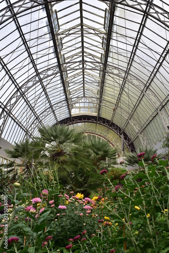 Vertical view of large vintage greenhouse in Auckland Domain Wintergardens Canvas-taulu