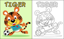 Coloring Book Vector With Cute Tiger The Soccer Player
