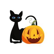 Black Cat Halloween And Pumpkin
