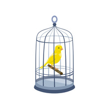 Llustration With A Bird In A Cage. Vintage Cage