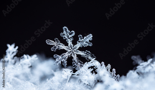Cuadros en Lienzo natural snowflakes on snow, winter